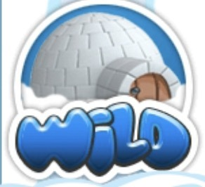 Artic Wild