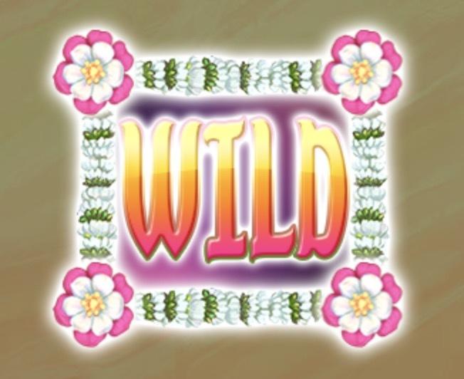 Bollywood Story Slot Machine: simbolo Wild