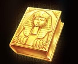 Book of Gold Slot Machine: simbolo Wild