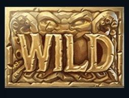 Dark Vortex Slot Machine: simbolo Wild