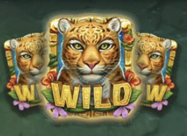 Rainforest Magic Slot Machine: simbolo Wild