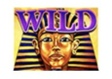 Sphinx Wild Slot Machine: simbolo Wild
